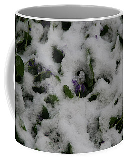 Coffee Mug featuring the photograph So Much For An Early Spring by David S Reynolds