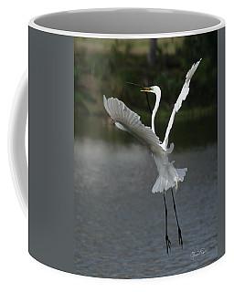 So You Think You Can Dance Coffee Mug