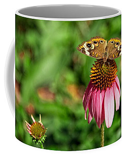 Coffee Mug featuring the photograph Soaking Up The Sun by Dave Files