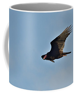 Coffee Mug featuring the photograph Soaring by David Porteus