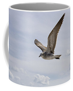Soaring Gull Coffee Mug