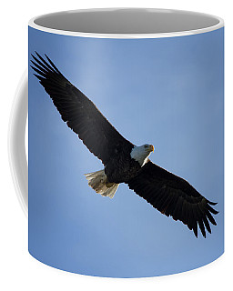 Coffee Mug featuring the photograph Soaring by Kim Hojnacki