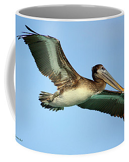 Coffee Mug featuring the photograph Soaring Pelican by Suzanne Stout
