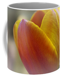 Coffee Mug featuring the photograph Soft Details  by John S