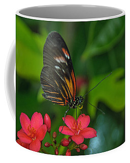 Coffee Mug featuring the photograph Soft Landing by Tam Ryan