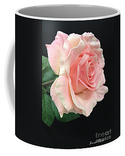 Coffee Mug featuring the photograph Soft Pink Rose 1 by Jeannie Rhode