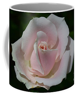 Coffee Mug featuring the photograph Soft Pink Rose by Jeannie Rhode