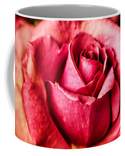 Coffee Mug featuring the photograph Softly by Wallaroo Images