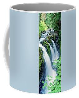 Sol Duc Falls Olympic National Park Wa Coffee Mug