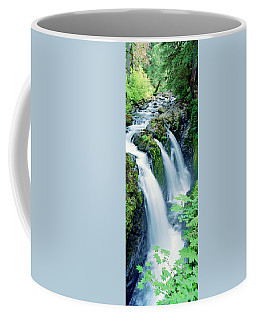 Sol Duc Falls Olympic National Park Wa Coffee Mug by Panoramic Images