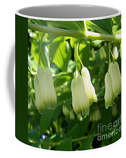 Coffee Mug featuring the photograph Solomon's Seal by Jolanta Anna Karolska