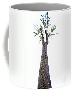 Coffee Mug featuring the photograph Somewhere Up There by Randi Grace Nilsberg