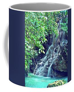 Niagra Falls Coffee Mugs
