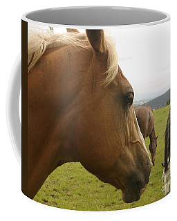 Coffee Mug featuring the photograph Sorrel Horse Profile by Belinda Greb
