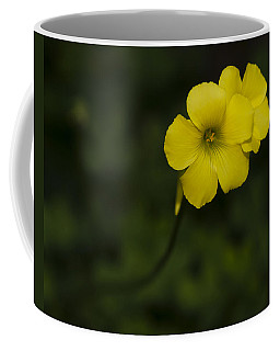 Sour Grass Coffee Mug
