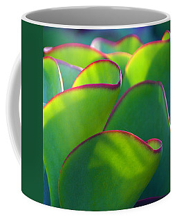South African Beauty Coffee Mug by Byron Varvarigos