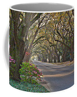 South Boundary In Spring Coffee Mug