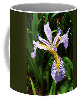 Southern Blue Flag Iris Coffee Mug