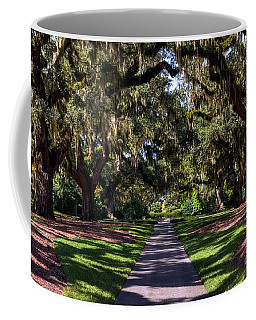 Coffee Mug featuring the photograph Spanish Moss 2 by Mel Steinhauer