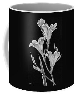 Sparaxis Flowers Coffee Mug