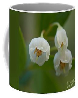 Sparkleberry Trio Coffee Mug by Paul Rebmann