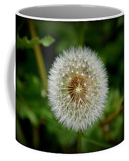 Sparkling Dandelion Coffee Mug by Debra Martz