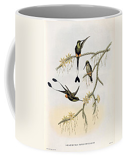 Spathura Solstitialis Coffee Mug