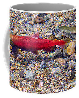 Coffee Mug featuring the photograph Spawning Pair by Jim Thompson