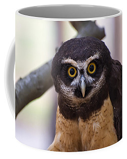 Spectacled Owl Coffee Mug