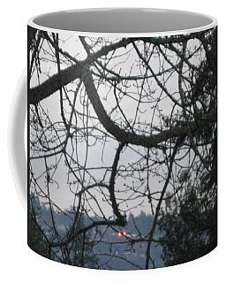 Spider Tree Coffee Mug by David Trotter