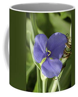 Spiderwort 4 Coffee Mug