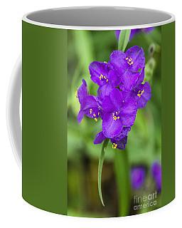 Spiderwort Spectacular Coffee Mug