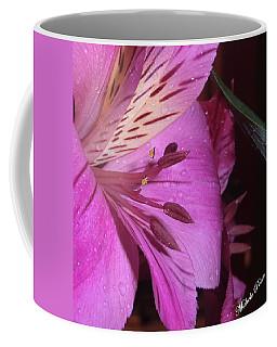 Splendid Beauty Coffee Mug