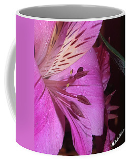 Splendid Beauty Coffee Mug