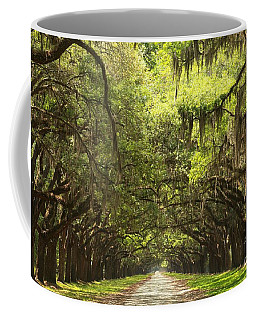 Splendid Oak Drive Coffee Mug