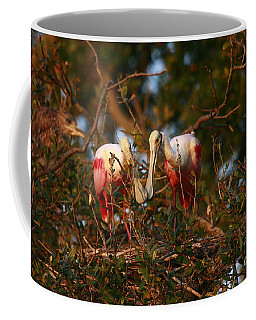 Coffee Mug featuring the photograph Spoonbill Love Nest by John F Tsumas