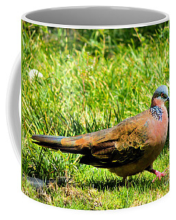 Coffee Mug featuring the photograph Spotted Nape Dove by Kristine Merc
