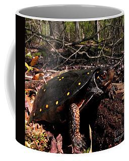 Spotted Turtle Coffee Mug