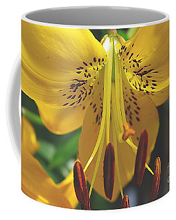 Coffee Mug featuring the photograph Spread Your Wings by John S
