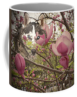 Spring And Beauty Coffee Mug