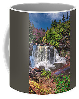 Spring At Blackwater Falls Coffee Mug