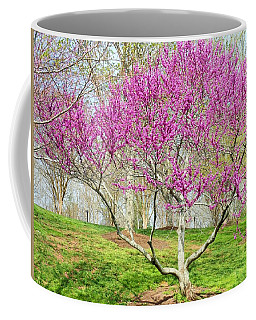 Spring Blooms Coffee Mug by Kay Gilley
