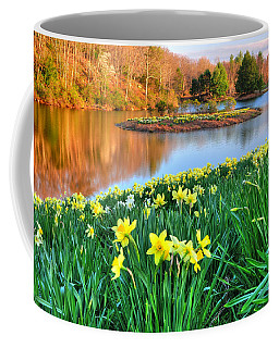 Spring Daffodils At Laurel Ridge-connecticut  Coffee Mug
