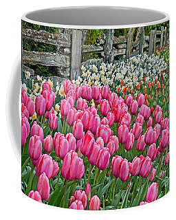 Spring Fence Landscape Art Prints Coffee Mug