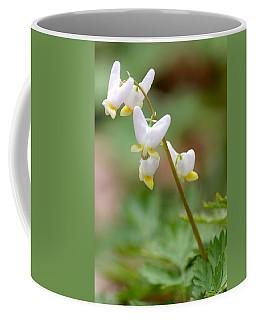 Spring Flower Coffee Mug by Tiffany Erdman