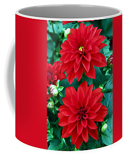 Spring Flowers 5 Coffee Mug
