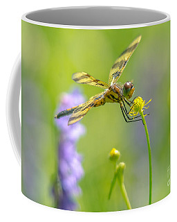 Coffee Mug featuring the photograph Spring Halloween Pennant  by Cheryl Baxter