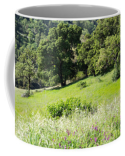 Coffee Mug featuring the photograph Spring Hike by Suzanne Luft