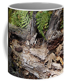 Coffee Mug featuring the photograph Spring In Knockan Hill by Cheryl Hoyle