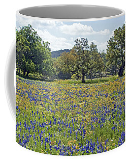 Spring In The Texas Hill Country Coffee Mug